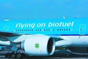 荷兰航空将在华购两千吨地沟油 将其转为飞行燃油(图)