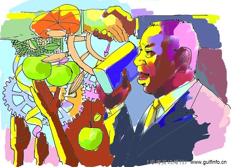 非洲经济委员会鼓励乍得推动经济多元化发展