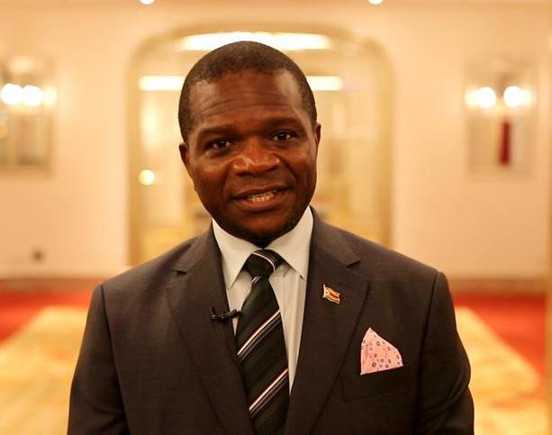 """津巴布韦驻华大使:""""一带一路""""将世界连接到一起"""