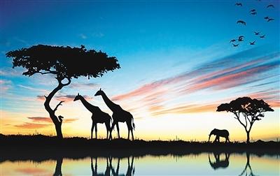 南非旅游部发布最新《旅游业恢复计划草案》